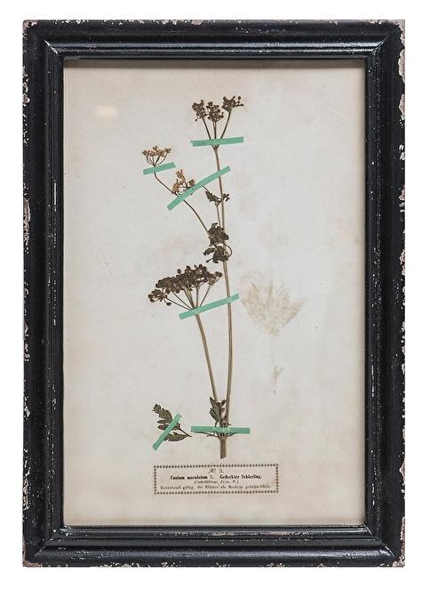 Warm Design Vintage Çiçek Motifli Duvar Dekoru Renkli